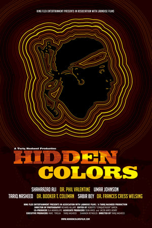 Hidden Colors